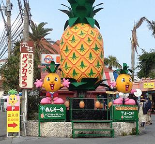 観光立地を活かした新規顧客獲得経路の拡充で通販年商3.5億円<br>「株式会社 名護パイン園」