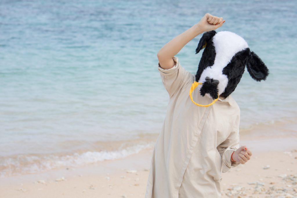 熊野牛専門オンラインショップがリニューアルオープン